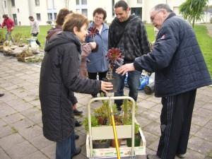 Echange de plantes